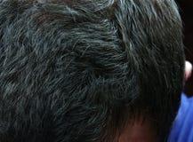 Graying волосы стоковая фотография