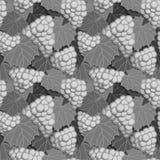 Grayscale das uvas e das folhas Imagens de Stock
