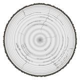 Grayscale de madera de la madera de construcción aislado en el fondo blanco Imagen de archivo libre de regalías