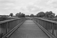 Grayscale Image of Bridge Stock Image
