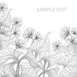 Grayscale leafage. Abstract floral background with space for text Stock Photography