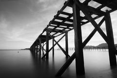 Grayscale Photo of Bridge stock photo