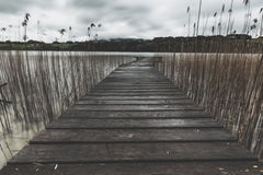 Grayscale Photo of a Bridge Near Body of Water during Daytime Royalty Free Stock Photography