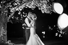 Grayscale Photo Of Couple Under The Tree royalty free stock photo