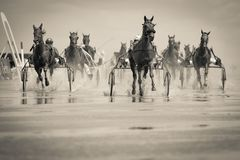 Grayscale Photo of Group of Horse With Carriage Running on Body of Water Stock Photo