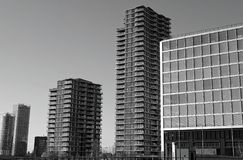 Grayscale Photo of High Rise Buildings royalty free stock photo