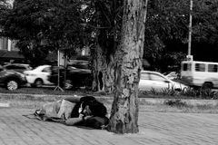 Grayscale Photo of Man Lying Beside Tree Stock Images
