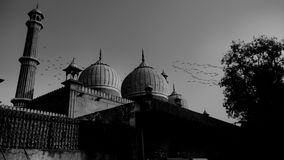 Grayscale Photo of Mosque Royalty Free Stock Photo