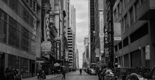 Grayscale Photo of New York Timesquare royalty free stock photo