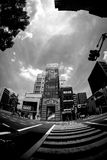Grayscale Photo Ogf High Rise Bulding Royalty Free Stock Images