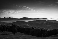 Grayscale Photo of Trees Near Mountains Stock Images