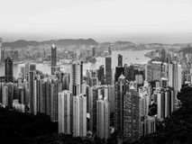 Grayscale Photography of High-rise Buildings Royalty Free Stock Photography