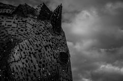 Grayscale Photography of Horse Head and Clouds Stock Images