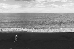 Grayscale Photography of Human Standing on Seashore Near Beach Stock Image
