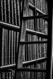 Grayscale Photography of Ladder Near Bookshelf Royalty Free Stock Photography