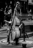 Grayscale Photography of Man Playing Cello Royalty Free Stock Photography