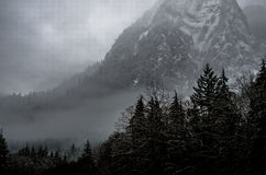Grayscale Photography of Pine Trees Covered With Fog Near Snowy Mountain Royalty Free Stock Images