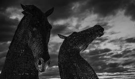 Grayscale Photography of Two Horse Statues Royalty Free Stock Images