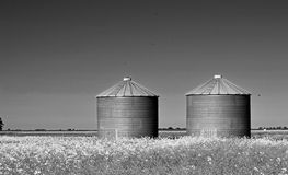 Grayscale Photography of Two Silo on Grass Royalty Free Stock Image