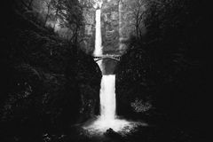 Grayscale Photography of Waterfalls Between Forest Royalty Free Stock Images