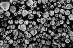 Grayscale Photography of Wirewood Logs royalty free stock image