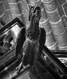 Grayscale Representation of a Bird Statue Royalty Free Stock Photography