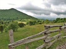 Grayson Highlands State Park em Virgínia foto de stock royalty free