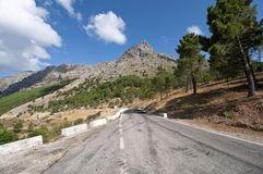 Grazalema Natural Park Royalty Free Stock Photo