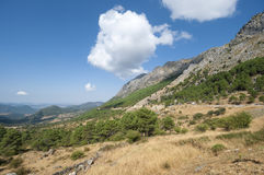 Grazalema Natural Park Royalty Free Stock Photography
