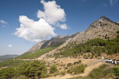 Grazalema Natural Park Royalty Free Stock Image