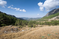 Grazalema Natural Park Stock Photo