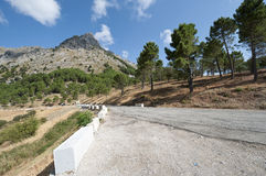 Grazalema Natural Park Royalty Free Stock Images