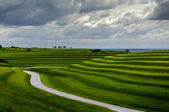 Grazed terraces Royalty Free Stock Images