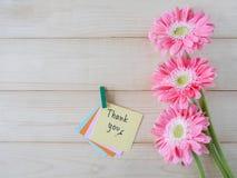 Grazie 24 Immagini Stock