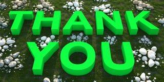 Grazie testo verde su erba verde Immagine Stock Libera da Diritti