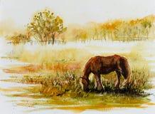 Grazin del caballo en un prado ilustración del vector