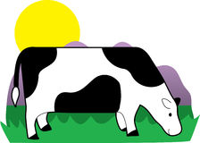 Grazing Cow Stock Images