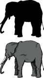 Grazing Elephant royalty free illustration