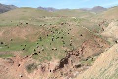The Grazing Sheep. On the hill, Tajikistan Stock Photo