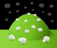 Grazing sheeps Royalty Free Stock Photo