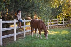 Grazing. A woman watches her horse as she sits on a fence stock photography