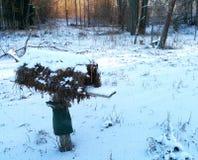 gård för white för USA för hus för tillbaka färg för fågel blå hängande röd Fotografering för Bildbyråer