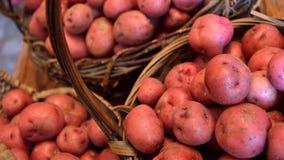Größe mit großem Bildschirm von Körben von kleinen roten Frühkartoffeln Lizenzfreies Stockfoto