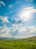 Grean草甸在蓝天下 免版税库存图片