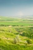 Grean草甸在蓝天下 图库摄影