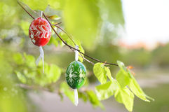 Grean Easter background with wooden eggs on the tree Stock Photos