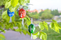 Grean Easter background with wooden eggs on the tree Stock Photo