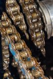 Grease roller chain. Closeup of roller chain in grease stock photos