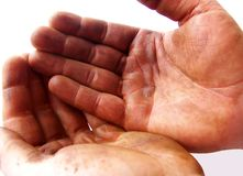 Greasy, Expectant Hands. Image of two hands darkened with grease, held together.  Image has white background and horizontal orientation Royalty Free Stock Photo