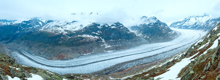 Great Aletsch Glacier (Bettmerhorn, Switzerland) panorama. Stock Images